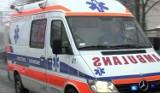 Zatrucie grzybami w Szczecinie. Dwulatek wylądował w szpitalu