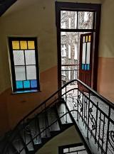 Kraków. Co kryją w sobie stare kamienice? Ich klatki schodowe zachwycają [ZDJĘCIA]