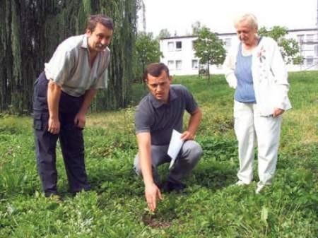 Tadeusz Gołąb, Wojciech Jaworski i Halina Glajcar pokazują miejsce, gdzie kiedyś stało urządzenie, z którego korzystały dzieci.