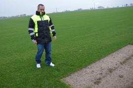 Plantacja Trawy W Czarnocinie Zielone Dywany Na 130