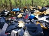 Śmieciarze buszują po opustoszałych lasach. Namierzyć ich starają się poznańscy strażnicy miejscy. Powstaje coraz więcej dzikich wysypisk