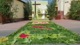 Kwiatowe dywany ozdobiły wsie pod Strzelcami Opolskimi. Są jak dzieła sztuki [ZDJĘCIA]