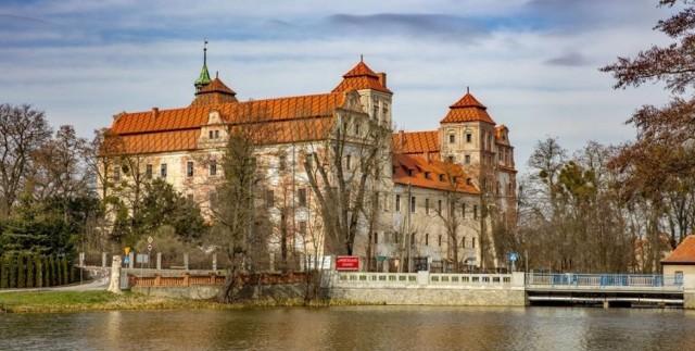 Zamek w Niemodlinie zdobył certyfikat internautów w konkursie Polskiej Organizacji Turystycznej.