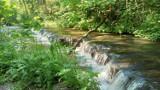 Szumy nad Tanwią. Magiczne wodospady w Lubelskiem. Zobacz zdjęcia