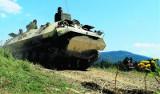 Na bielskich Błoniach trzeba chronić żaby przed... czołgami