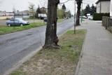 Zbąszyń: Na ulicy Sportowej, nastąpi modernizacja nawierzchni i budowa kanalizacji deszczowej