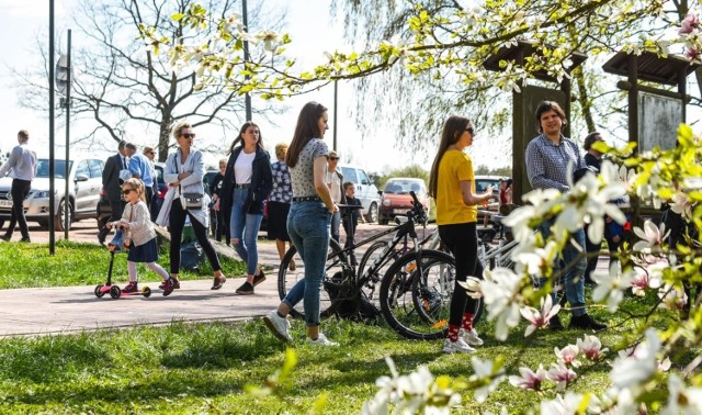 """W wielkanocną niedzielę skwery i miejskie parki zapełniły się tłumami bydgoszczan, którzy spacerując, maszerując z kijkami, biegając i jeżdżąc na rowerach, gubili świąteczne kalorie. Pogoda sprzyjała rekreacji. Zobaczcie zdjęcia z bydgoskiego Myślęcinka.    """"Dojrzalsi"""". Nowy program skierowany do seniorów (odc. 1)"""