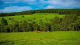 Agroturystyka z noclegami w pobliżu Legnicy. Oto lista 10 gospodarstw agroturystycznych w regionie idealnych na sielskie wakacje! ADRESY
