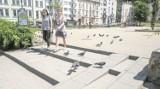 Kraków. Szczury grasują po mieście! Pełno ich na przystankach [WIDEO]