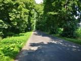 Kuślin. Ogłoszono przetarg na ścieżkę rowerową z Wąsowa do Trzcianki