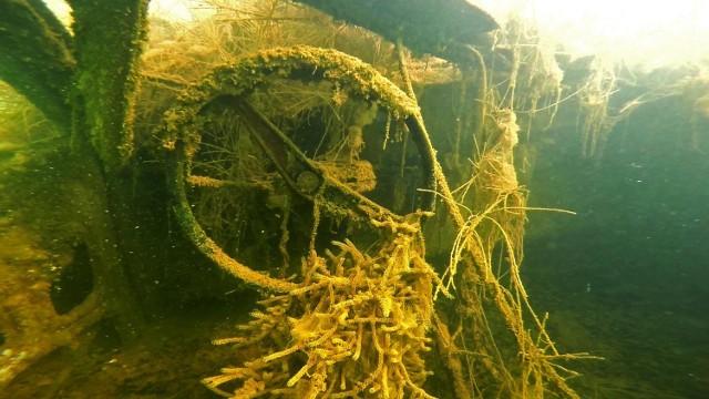 Zachwycające, podwodne krajobrazy jezior pokopalnianych w geoparku Łuk Mużakowa. Jezioro Afryka, koło wieży widokowej jest najmniej zakwaszone i pojawia się w nim życie.
