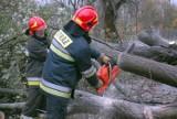 """Orkan """"Grzegorz"""" łamał drzewa i zrywał dachy w Małopolsce [ZDJĘCIA, WIDEO]"""