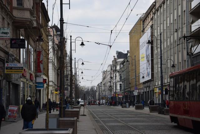 Nowe drzewa na ulicy 3 Maja w Katowicach