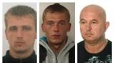 Listy gończe. Mężczyźni z powiatu gdańskiego poszukiwani przez policję [CZĘŚĆ 2]
