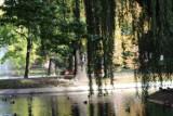 Park przy Placu Tadeusza Kościuszki w jesiennej odsłonie [ZDJĘCIA]