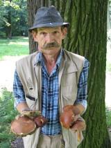 Syców: Unikajmy grzybów blaszkowych