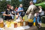 Zielony Piknik Europejski w słupskim Parku Kultury i Wypoczynku [ZDJĘCIA]