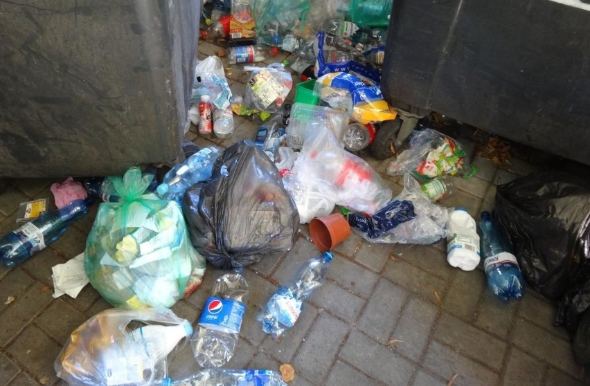 Firmy śmieciowe będą dokumentować przypadki nieselektywnej...