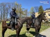 Policjanci z końmi i psami odwiedzili domy dziecka ZDJĘCIA