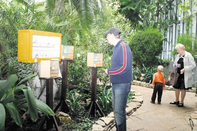 W Palmiarni do niedzieli są prezentowane egzotyczne ptaki.