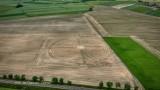 W Milikowicach pod Świdnicą rośnie labirynt z kukurydzy. To nie robota kosmitów tylko naszych rolników (ZDJĘCIA)