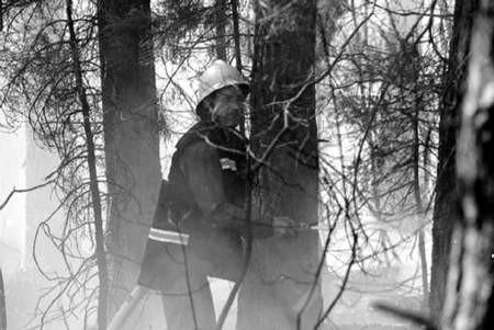 Pod Wąsoszem spłonęło kilka hektarów lasu. fot. JAKUB MORKOWSKI