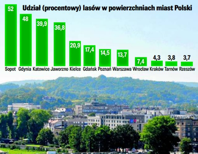 Największy w Krakowie jest Las Wolski, który zajmuje 419 ha. Łącznie w całym mieście mamy 1431 ha terenów leśnych