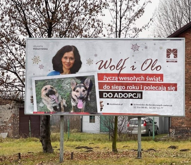 Billboard z Jolantą Fraszyńską można już dostrzec w mieście. Aktorka i mysłowiczanka składa świąteczne życzenia i poleca psy do adopcji.   Zobacz kolejne zdjęcia. Przesuń zdjęcia w prawo - wciśnij strzałkę lub przycisk NASTĘPNE