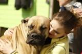 Dziwne zachowania psów. Jak je zinterpretować? Rozszyfruj swojego psa!