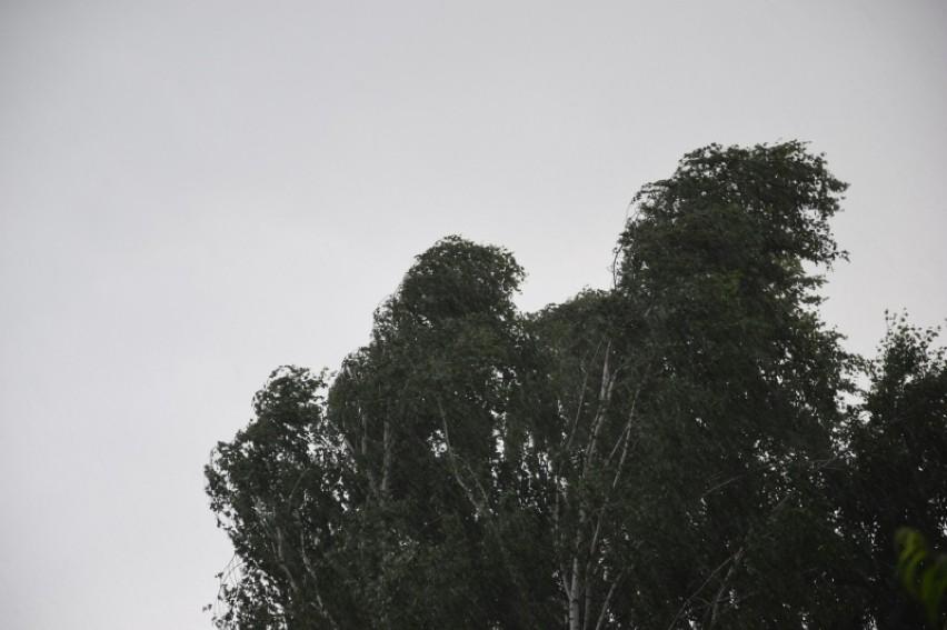 Ostrzeżenie przed silnym wiatrem po południu