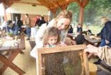 Światowy Dzień Pszczoły w Lubuskim Centrum Winiarstwa w Zaborze