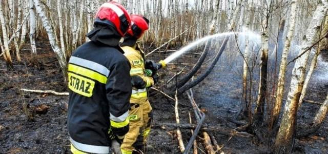 75 strażaków z województwa pomorskiego, w tym trzech strażaków z JRG w Rumi brało udział w gaszeniu pożaru w Biebrzańskim Parku Narodowym. Przy gaszeniu brały udział setki strażaków z całego kraju.  WIĘCEJ ZDJĘĆ Z WYDARZENIA