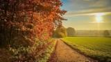 Jaka będzie jesień? Przysłowie prawdę Ci powie! Sprawdź, czy je znasz