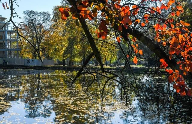 Bydgoszcz w jesiennych barwach