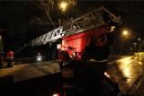Strażacy podsumowują skutki Ksawerego! Wśród interwencji powalone drzewa i ...ewakuacja byków