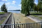 Żnin. Znowu susza, a w jeziorze i rzece Gąsawce mniej wody [zdjęcia]