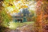 10 pomysłów na pochmurny jesienny weekend w Ostrowie Wielkopolskim