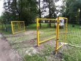 Wybieg dla psów w parku w Szczecinku. Czworonogi będą zadowolone [zdjęcia]