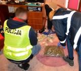 Starogard Gd. Narkotyki trzymał na podłodze w sypialni oraz w domowej siłowni FILM