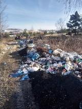 Gospodarowanie odpadami w Gminie Międzybórz - podsumowanie działań