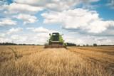 Aktualne ceny ziemi rolnej 2021. Takie stawki obowiązują od maja [województwa]