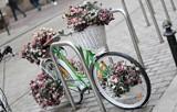 Rowery. Jak przygotować rower do sezonu? Czyszczenie i przegląd