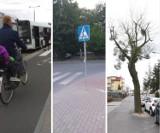 Absurdy drogowe w Toruniu. Gdzie możesz się na nie natknąć? Zobacz zdjęcia!