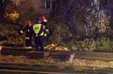 Śmiertelny wypadek na przejeździe kolejowym. Nie żyje 40-latek