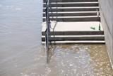 Warszawa. Wysoki stan wody w Wiśle. Bulwary zalane. Policja ostrzega przed niebezpieczeństwem. 13-latka wpadła do rzeki