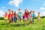 Parki rozrywki dla dzieci w Poznaniu: Kinder Park Poznań, Małpi Gaj, Park Rozrywki Rodzinka. Miejsca dla dzieci