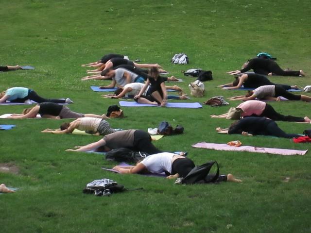 Joga w Poznaniu - bezpłatne zajęcia w parku przy Starym Browarze
