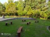 Gdynia: Park przy ul. Spokojnej w Małym Kacku pięknieje, a to nie koniec inwestycji