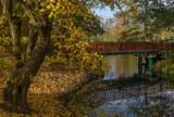 Pierwszy dzień jesieni 2019. Prognoza pogody dla Poznania na tydzień i długoterminowa