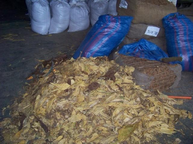 wytwórnia tytoniu w Brzegu